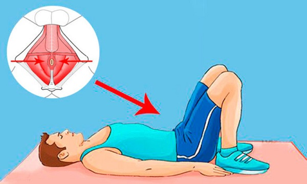 Тренировка мышц тазового дна